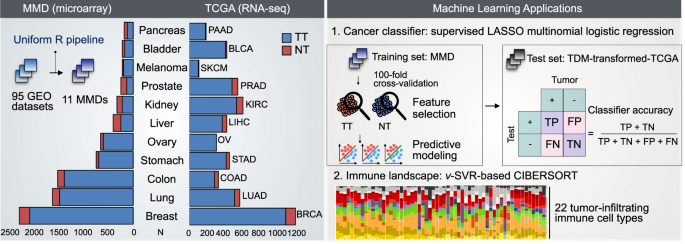 Compendiums of cancer transcriptomes for machine learning applications