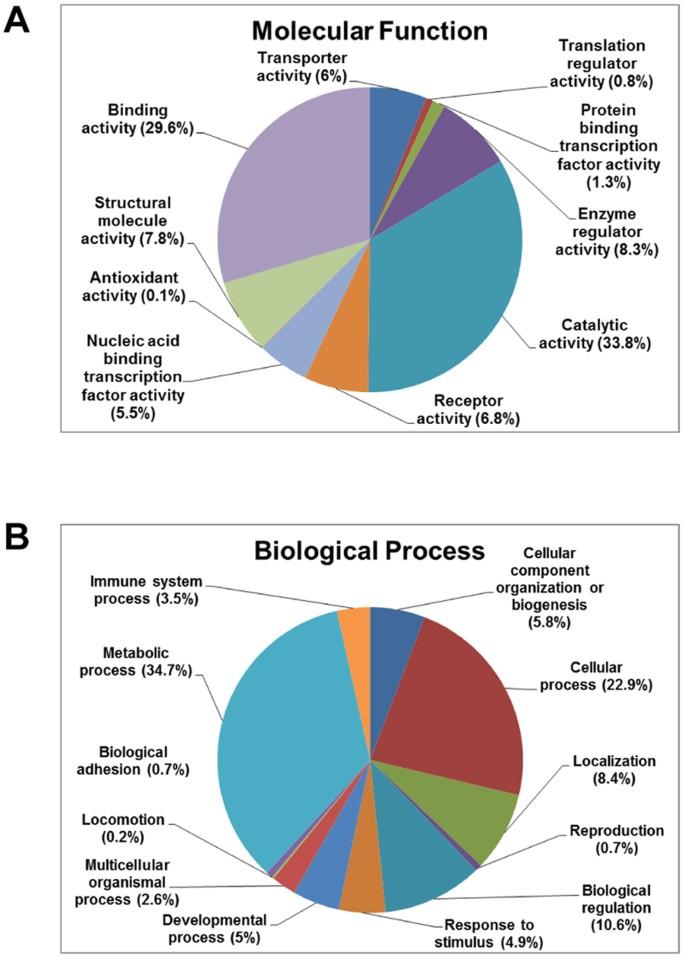 Proteomic analysis of proteome and histone post-translational