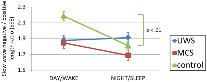 Night and day variations of sleep in patients with disorders