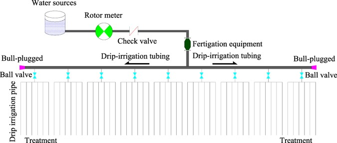 Evaluation of the effects of irrigation and fertilization on tomato