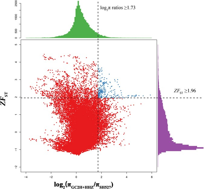 Pedigree-based genome re-sequencing reveals genetic