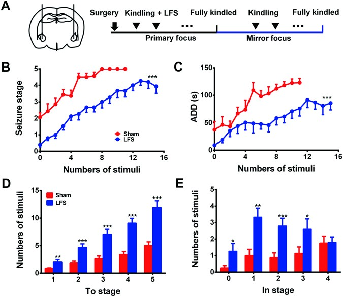 Low-frequency stimulation of the primary focus retards positive