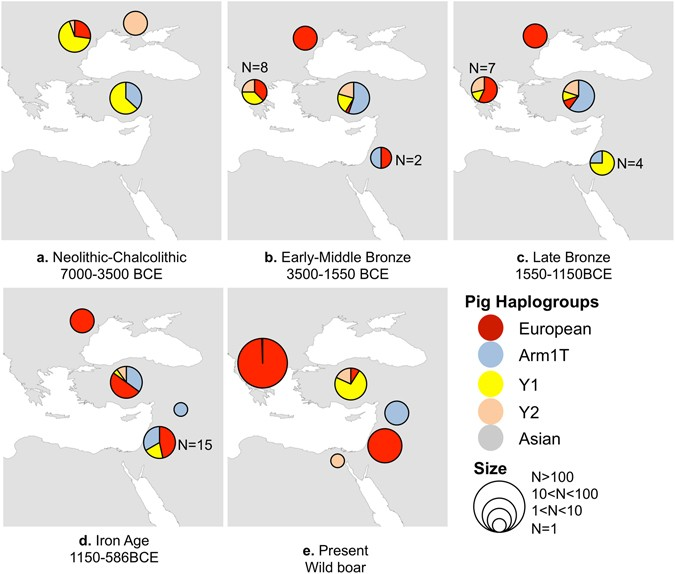 Eastern Mediterranean Mobility in the Bronze and Early Iron