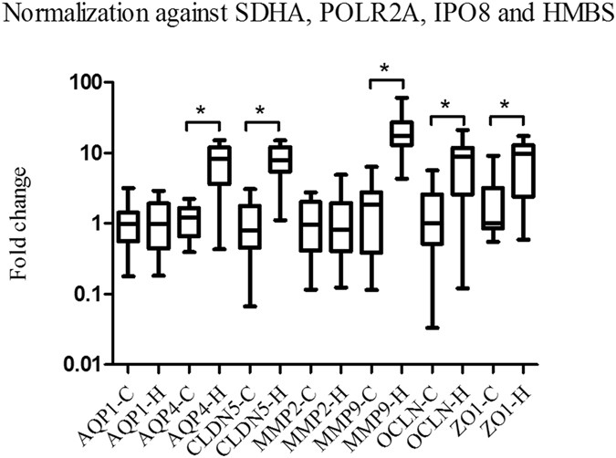 Increased cerebral expressions of MMPs , CLDN5 , OCLN , ZO1