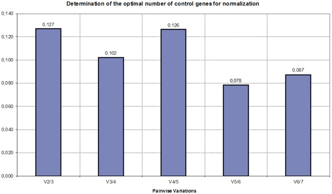 Validation of reference genes for the normalization of the