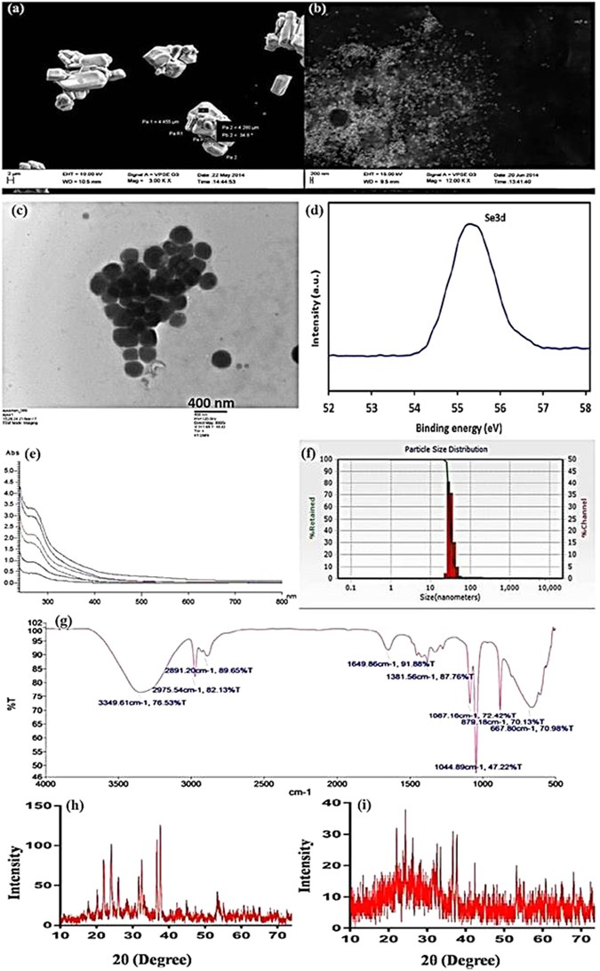 Trichogenic-selenium nanoparticles enhance disease