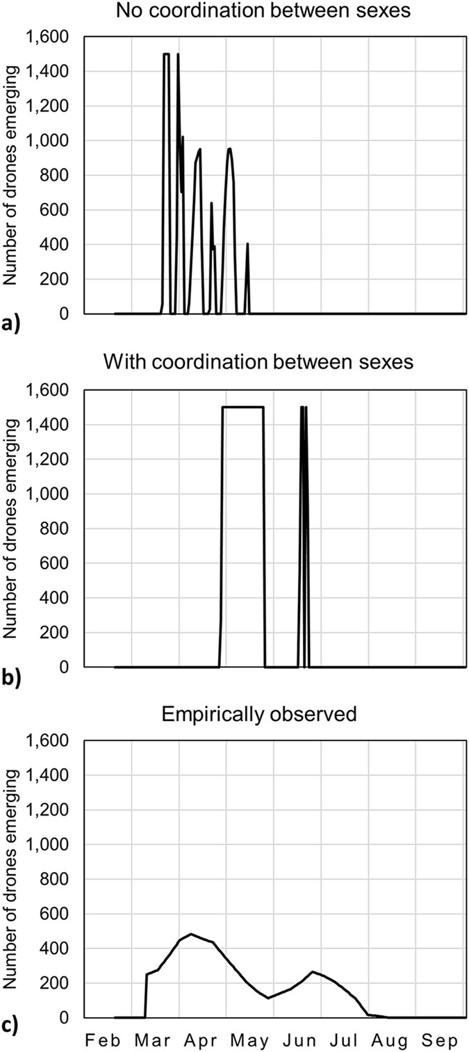 Coordination Between the Sexes Constrains the Optimization