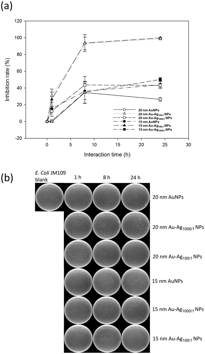 Antibacterial cellulose paper made with silver-coated gold