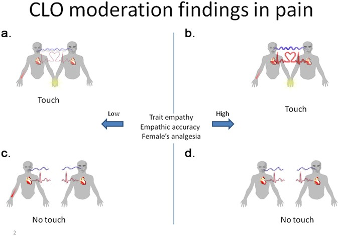 The role of touch in regulating inter-partner physiological