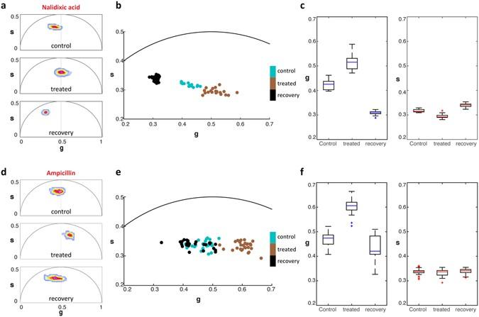 Metabolic fingerprinting of bacteria by fluorescence ... on