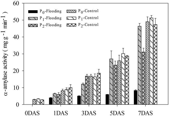 Seed Pelleting with Calcium Peroxide Improves Crop Establishment of