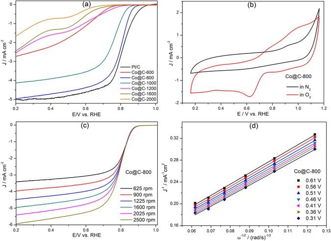 Metal-organic-frameworks derived cobalt embedded in various