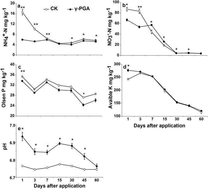 Effects of poly-γ-glutamic acid (γ-PGA) on plant growth and