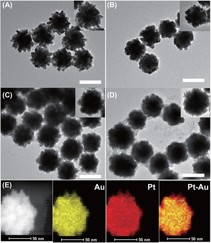 A self-supporting bimetallic Au@Pt core-shell nanoparticle