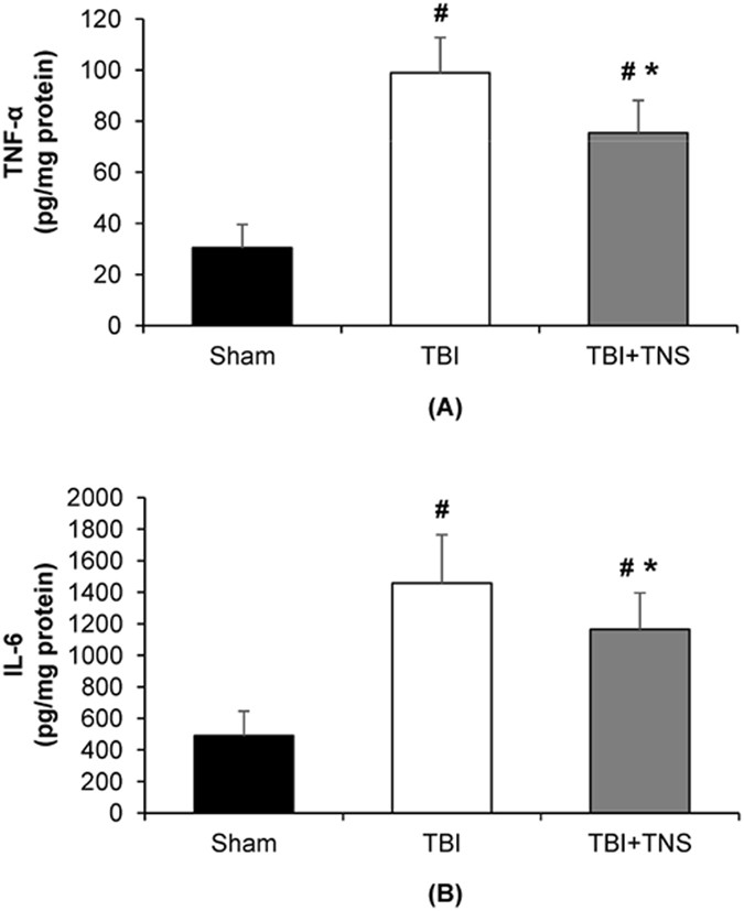 Neuroprotective Effects of Trigeminal Nerve Stimulation in Severe