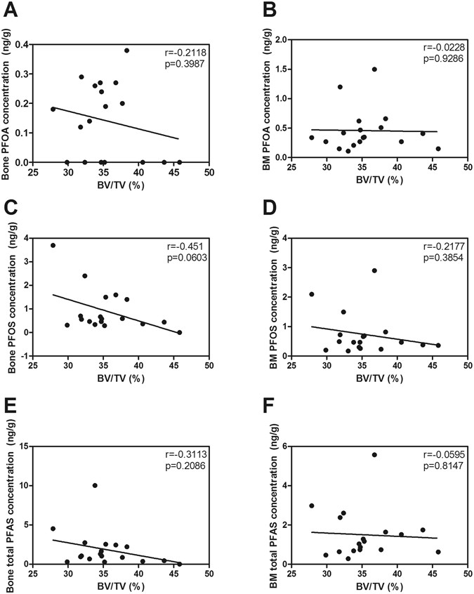 Perfluoroalkyl substances in human bone: concentrations in