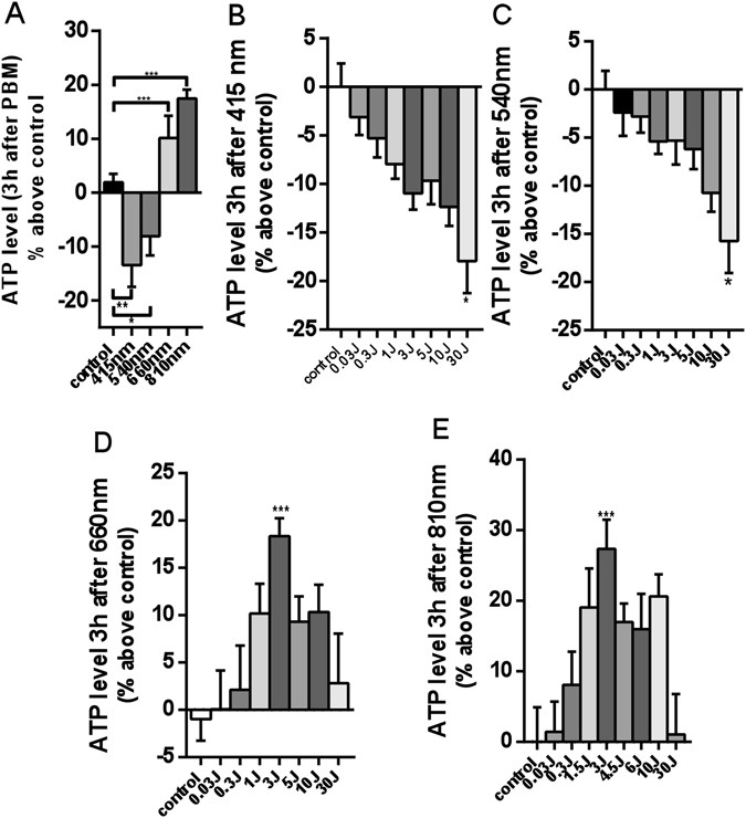 Red (660 nm) or near-infrared (810 nm) photobiomodulation stimulates