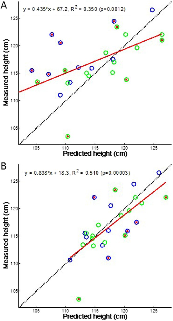 A time-varying biased random walk approach to human growth