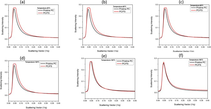 Structural and Thermal Stability of Polycarbonate Decorated