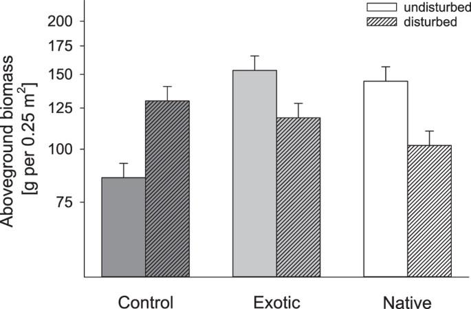 Interactions count: plant origin, herbivory and disturbance