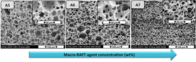 PEO-based brush-type amphiphilic macro-RAFT agents and their