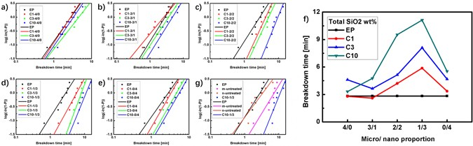 The Synergistic Effects of the Micro and Nano Particles in Micro