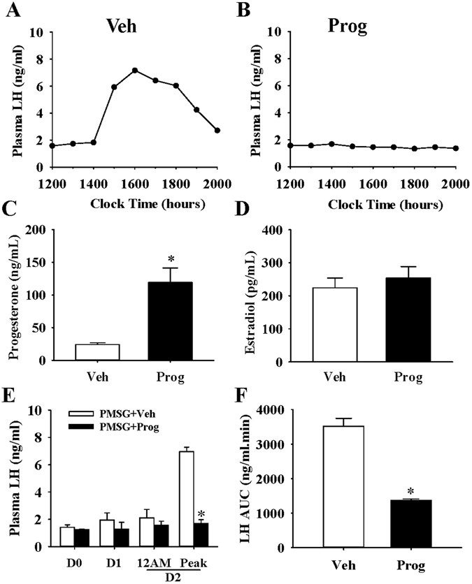 Hypothalamic effects of progesterone on regulation of the pulsatile