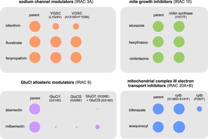 The relative contribution of target-site mutations in
