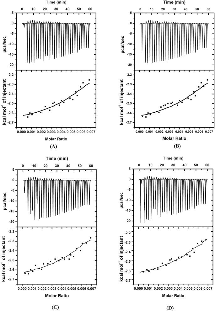 Potential inhibitors designed against NDM-1 type metallo-β