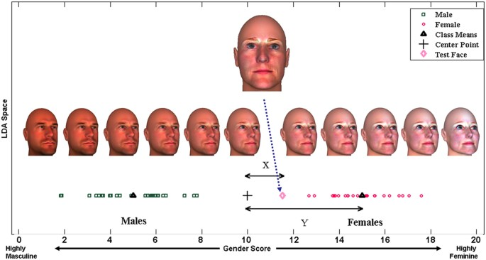 Is There Link Between Autism And Gender >> Hypermasculinised Facial Morphology In Boys And Girls With Autism