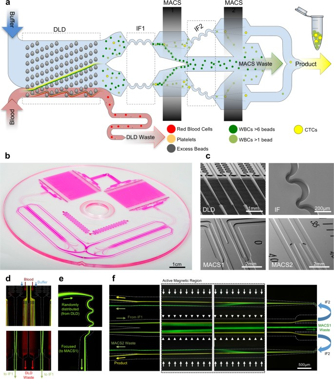 Monolithic Chip for High-throughput Blood Cell Depletion to Sort