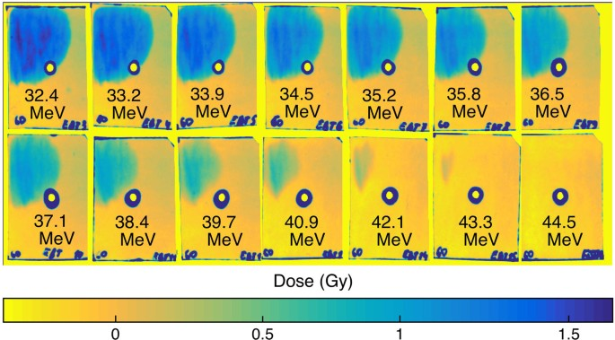 Experimental evidence for short-pulse laser heating of solid-density