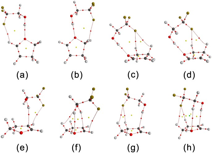 The Influence of the Position of the Double Bond and Ring Size on