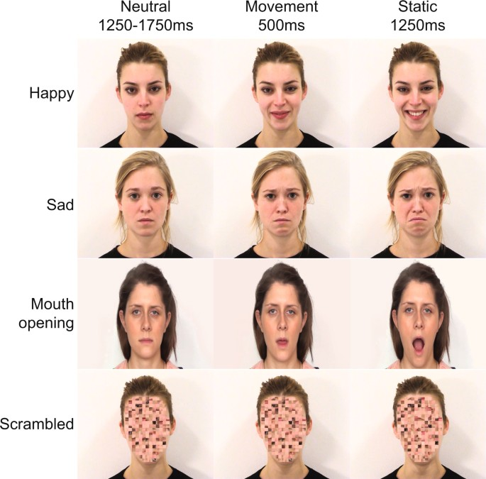 Early maternal mirroring predicts infant motor system activation