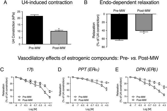 Estrogenic vascular effects are diminished by chronological aging |  Scientific Reports