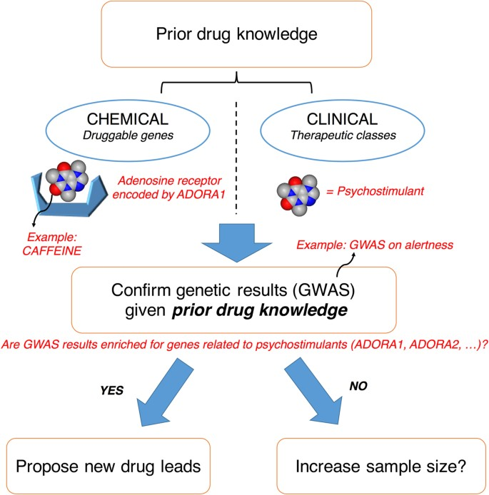 Drug enrichment and discovery from schizophrenia genome-wide