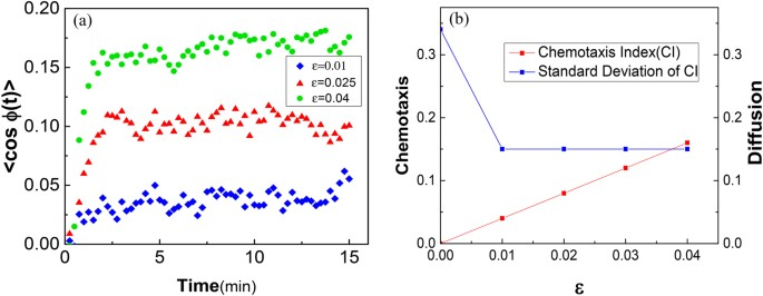 Discrete Modeling of Amoeboid Locomotion and Chemotaxis in