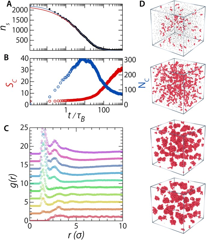 Doping colloidal bcc crystals — interstitial solids and meta