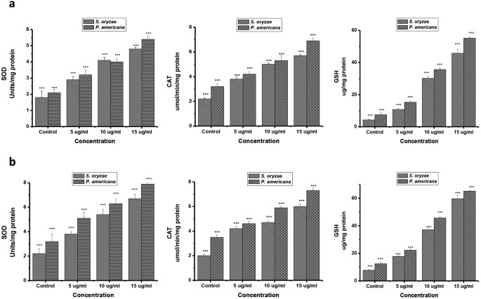 Biochemical efficacy, molecular docking and inhibitory