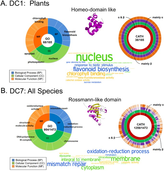 A proteome view of structural, functional, and taxonomic