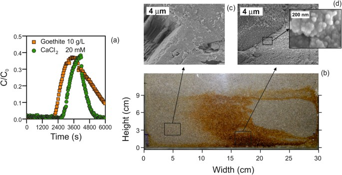 Controlled Deposition of Particles in Porous Media for