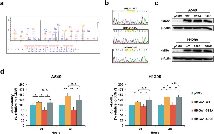 MCM2-regulated functional networks in lung cancer by multi