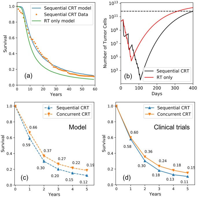 Prediction of Treatment Response for Combined Chemo- and Radiation