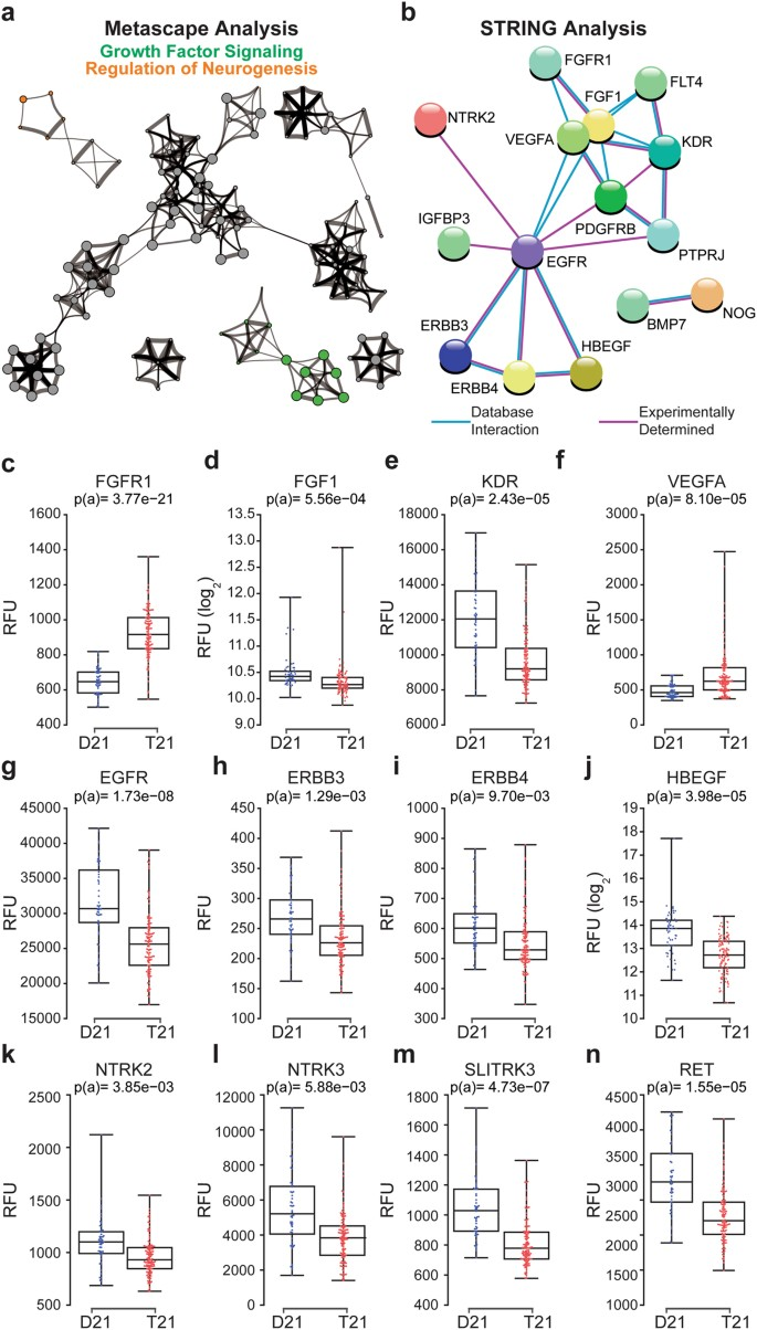 Trisomy 21 causes changes in the circulating proteome