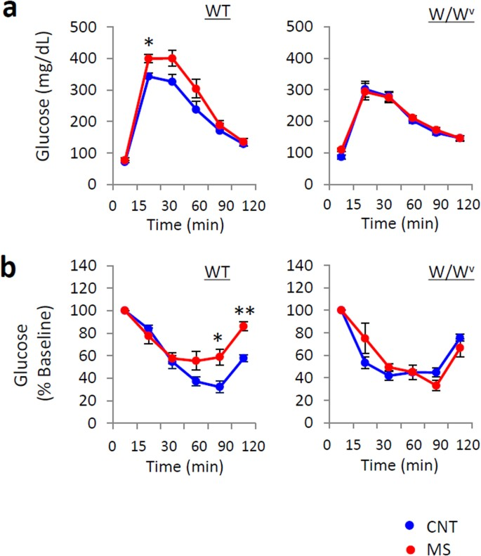 Mast cell involvement in glucose tolerance impairment caused