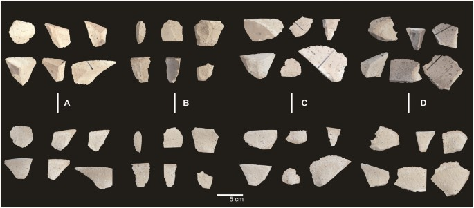 Teaching to make stone tools: new experimental evidence supporting a