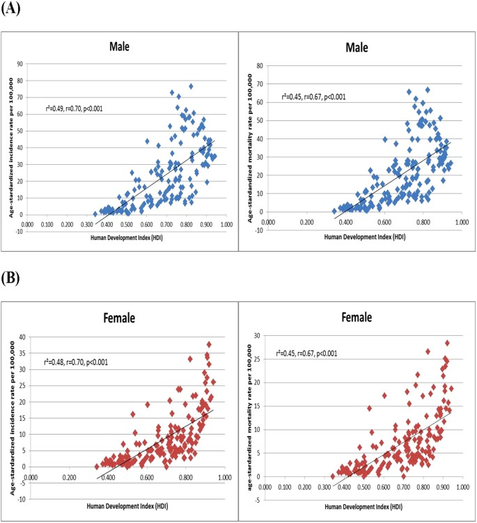 Socioeconomic Status And Developing >> Incidence And Mortality Of Lung Cancer Global Trends And