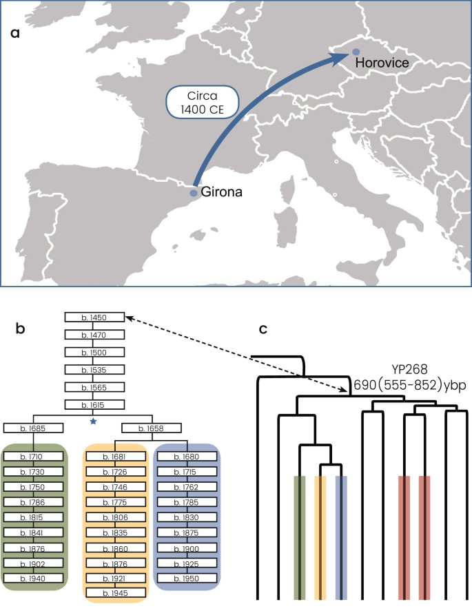 The genetic variation in the R1a clade among the Ashkenazi Levites