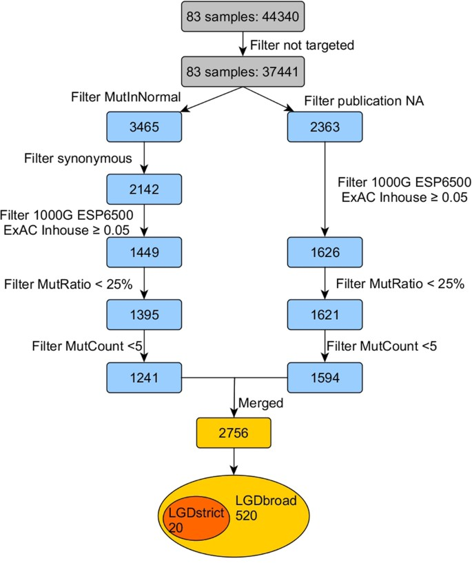 Sporadic Hirschsprung Disease: Mutational Spectrum and Novel