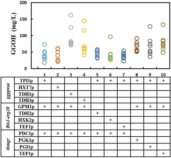 Engineering Saccharomyces cerevisiae for geranylgeraniol